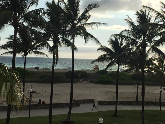 Casa Grande Suite Hotel of South Beach: This is the view