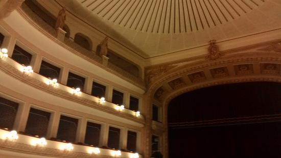 Teatro Francesco Cilea: Palchi