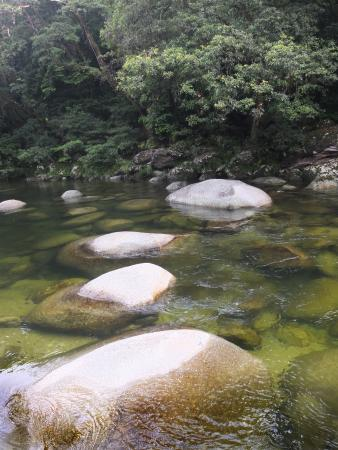 Daintree Region, Australië: Mossman River 2