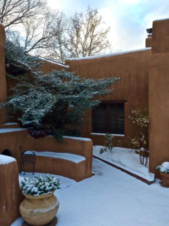 Hacienda Nicholas Bed & Breakfast Inn: Early morning snow:)