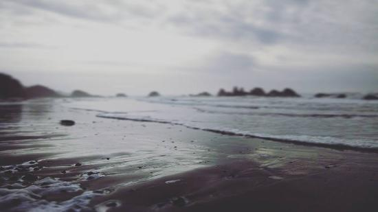 Seal Rock, OR: The Shoreline
