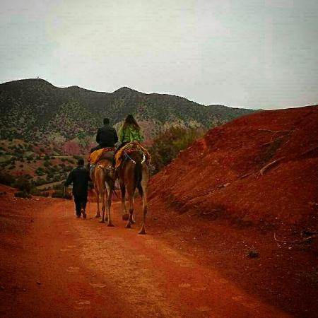 Trekking Morocco Mountains: IMG_20160205_220144_large.jpg
