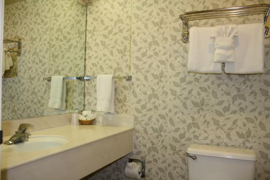 Camarillo Executive Inn & Suites: Guestroom bathroom