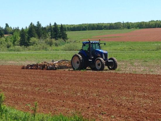 Bedeque, Kanada: Watching the field get plowed from the front deck