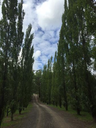 Windsor, Australia: Entrance to the property