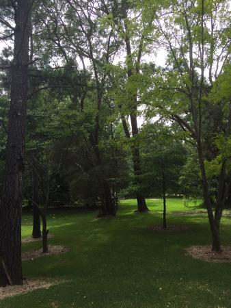 Windsor, Australia: Taking a walk around the grounds
