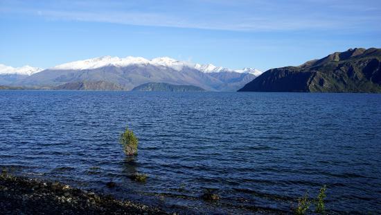 Lake Wanaka walking track view