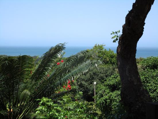 photo1.jpg - Picture of One-On-Hely, Mtunzini - TripAdvisor on