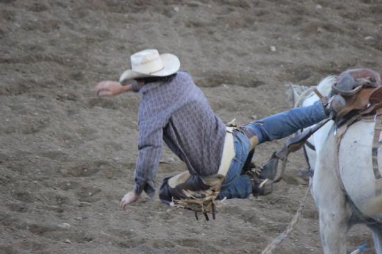 Cody, WY: Rodeo