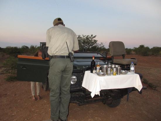 Timbavati Private Nature Reserve, แอฟริกาใต้: photo3.jpg