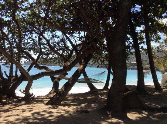 Sugar Reef Bequia: Wonderful view