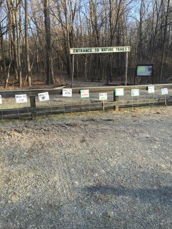 Richmond, IN: Hayes Arboretum