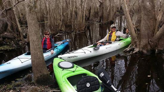 Eustis, FL: St. John's River, February 2016