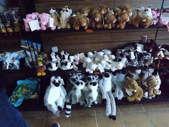 Santa Eugenia, Espanha: Loja dentro do parque com pelúcias de diversas espécies