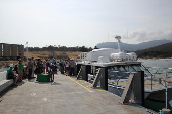 Triabunna, Αυστραλία: Maria Island Ferry - Fantatic!!