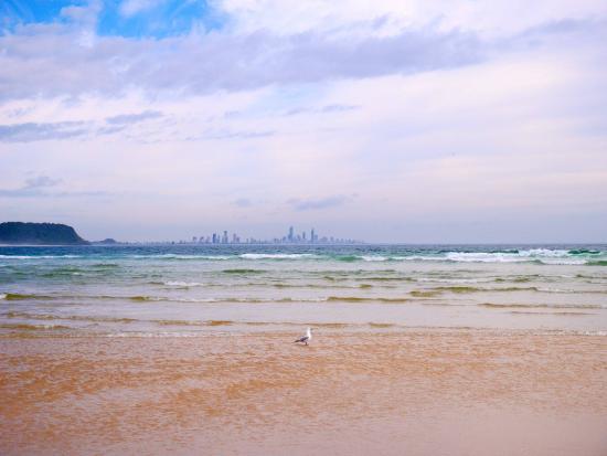 Gold Coast, Australia: 遠くにサーファーズパラダイスが