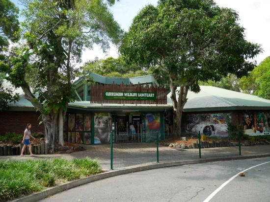 Currumbin, Australia: 入り口