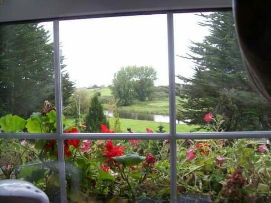 Trim, Irlanda: 1936099_1247773119332_5109708_n_large.jpg