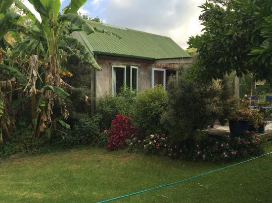 Purangi Gardens Accommodation: Susan and Rod have beautiful gardens around the cottages!