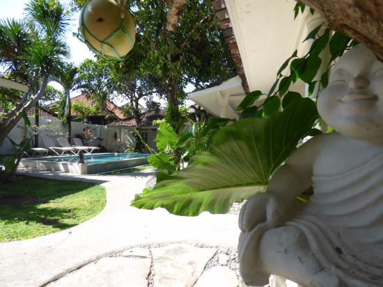 Gardenia Guesthouse: Serene garden/pool area