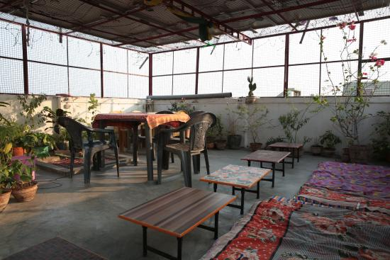 Somit Paying Guest House : eating area on the roof top