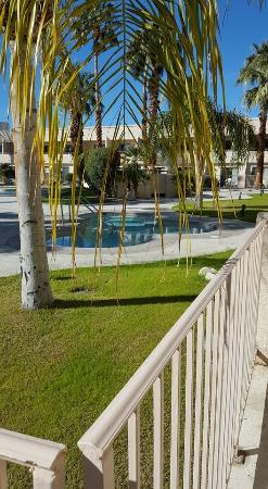 Miracle Springs Resort and Spa: View from pool side views (room 107)