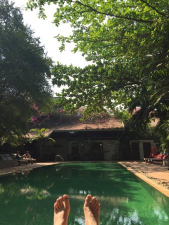 The Kabiki: Very nice swimming pool under big nice trees.