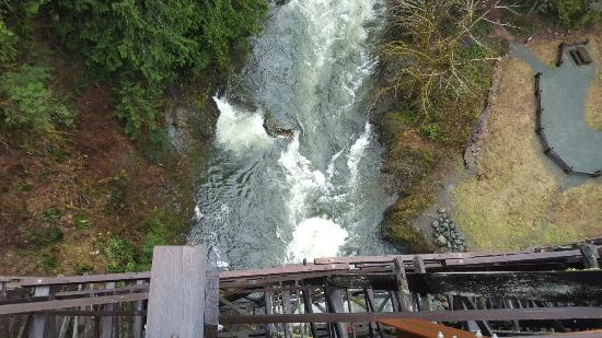 Shawnigan Lake, Kanada: View from Kinsol Trestle