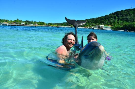 Roatan Institute for Marine Sciences - Anthony's Key Resort : You could purchase photo's of your swim. I chose a memory stick