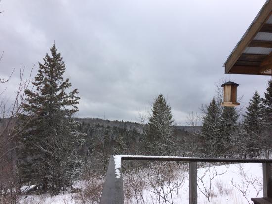 Algonquin Park, Καναδάς: photo2.jpg