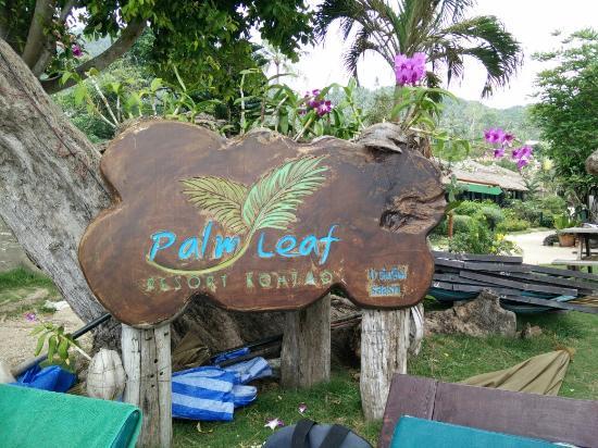 Palm Leaf Resort : TA_IMG_20160207_125248_large.jpg