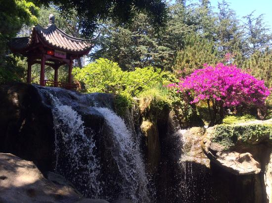 Chinese Garden Of Friendship: Gorgeous Gardens And Waterfalls