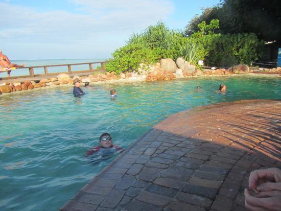 The Small Swimming Pool Picture Of Heron Island Resort Heron