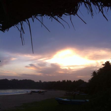 Talalla, Sri Lanka: photo4.jpg