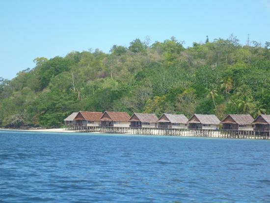 Rooms picture of papua paradise eco resort raja ampat tripadvisor - Raja ampat dive resort reviews ...