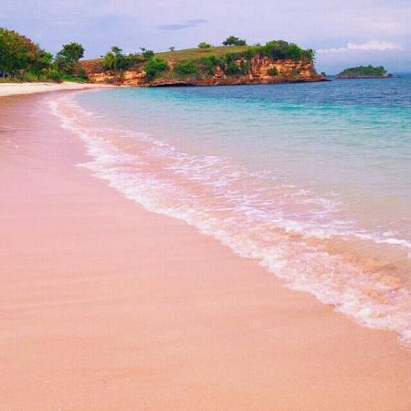 Desa Sekotong Barat, Indonezja: Pink Beach