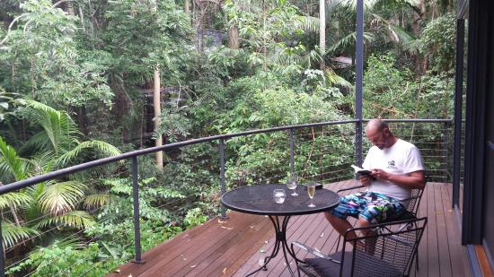 North Tamborine, أستراليا: Pethers Rainforest Retreat