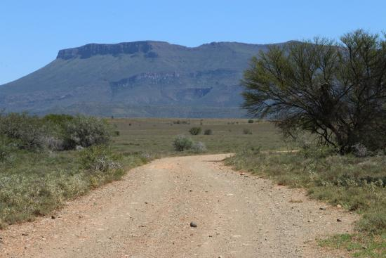 Cabo Oriental, África do Sul: All the roads in the Park are gravel.