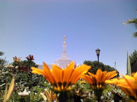 Templo Mormon de Ciudad Juarez