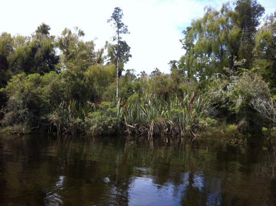 Haast, Nuova Zelanda: Hindley Stream