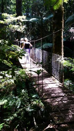 Guldkysten, Australien: Swinging bridge