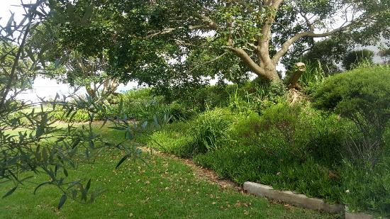 Garden Court Mossel Bay: 20160207_091839_large.jpg