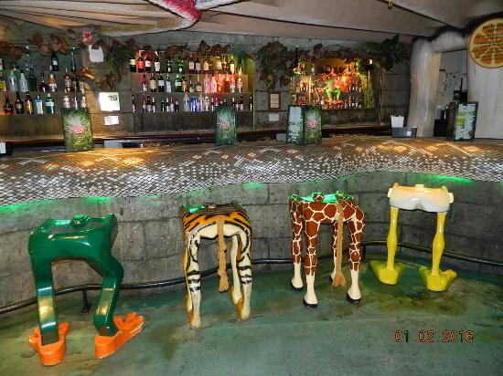an overview of rainforest cafe inc Rainforest cafe, inc is a restaurant located in miami, florida view phone number, website, employees, products, revenue, and more.