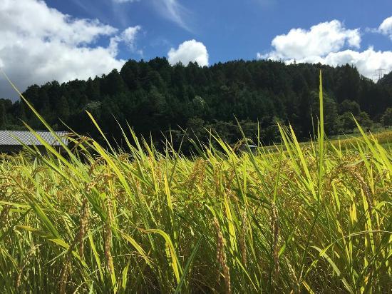 Hida, Japón: 飛騨古川の町並み