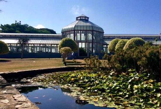 Port Elizabeth, Zuid-Afrika: Pearson Conservatory