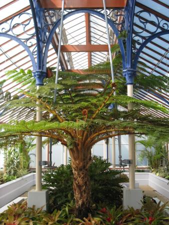 St George's Park: Pearson Conservatory