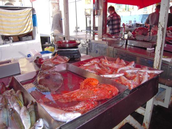 Marsaxlokk, Malta: Bel étalage de poissons bien colorés