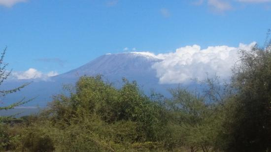 Kilima Safari Camp: View of Kilimanjaro from room