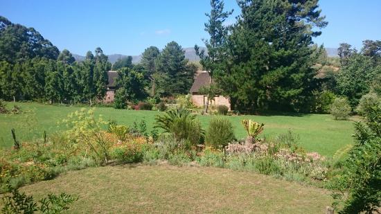 Grabouw, Republika Południowej Afryki: DSC_0830_large.jpg