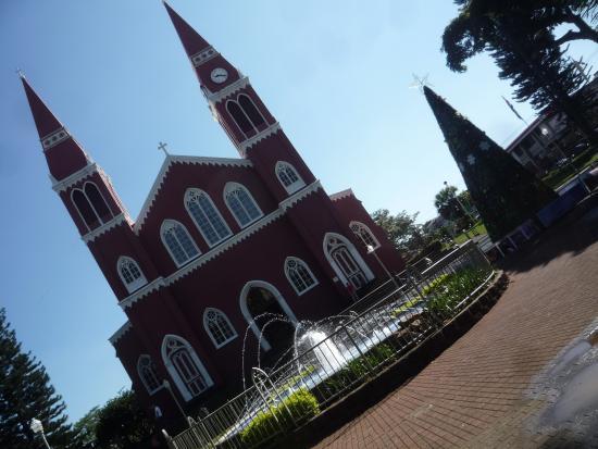 Grecia, Costa Rica: Рождественская ёлка